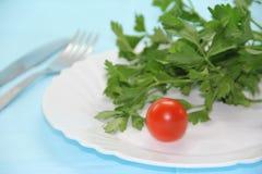 Pomidor i ziele na talerzu Obrazy Stock