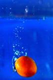 Pomidor kropli wodny finiszować na tle Obrazy Stock