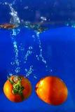 Pomidor kropli wodny finiszować na tle Zdjęcia Royalty Free