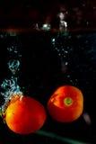 Pomidor kropli wodny finiszować na tle Fotografia Stock