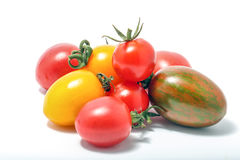 Pomidor mieszający dobierającym Obraz Royalty Free