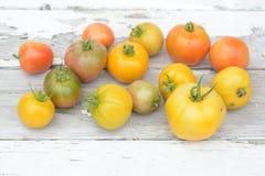 pomidor organicznych Zdjęcie Royalty Free