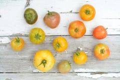 pomidor organicznych Zdjęcia Royalty Free