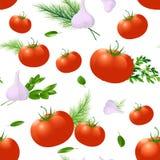 Pomidor, pikantność i ziele, bezszwowy wzoru ilustracja wektor