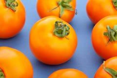 pomidor pomarańczowe Obrazy Royalty Free
