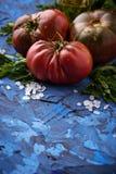 Pomidor, sól i pietruszka na błękicie, betonujemy tło fotografia stock