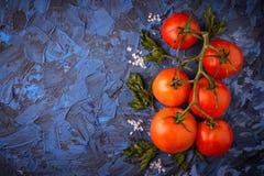 Pomidor, sól i pietruszka na błękicie, betonujemy tło obrazy royalty free