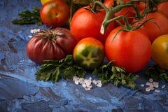 Pomidor, sól i pietruszka na błękicie, betonujemy tło obraz stock