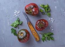 Pomidor, sól, pietruszka i nóż na szarość, betonujemy tło obraz stock