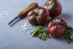 Pomidor, sól, pietruszka i nóż na szarość, betonujemy tło zdjęcia royalty free