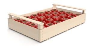 Pomidor w skrzynkach Zdjęcia Stock