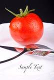 Pomidor w tekscie i talerzu Zdjęcia Royalty Free