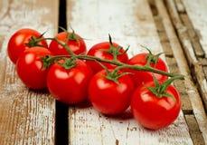 Pomidor wiązka Zdjęcie Royalty Free