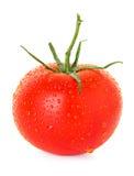 Pomidor z kroplami Fotografia Stock