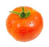 Pomidor z kropli wodą Zdjęcia Royalty Free