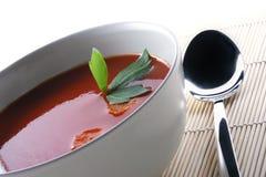 pomidor zupy Fotografia Stock