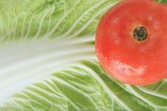 Pomidorowa świeżość fotografia royalty free