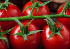 Pomidorowa czereśniowa makro- fotografia dla tła obrazy stock