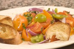 Pomidorowa i cebulkowa sałatka Fotografia Stock