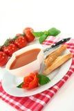Pomidorowa Kremowa Polewka Zdjęcia Royalty Free