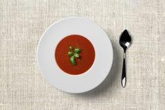 Pomidorowa polewka w bielu talerzu z zielonym ziele na wierzchołku obraz royalty free