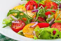 Pomidorowa sałatka Fotografia Royalty Free