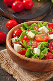Pomidorowa sałatka z sałatą, ser Obraz Stock