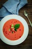 Pomidorowa zimna polewka Zdjęcia Stock