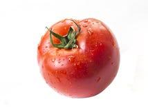 Pomidorowe dowcip wody krople zdjęcia stock