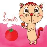 Pomidorowego kota schudnięcia śliczna duża głowa royalty ilustracja