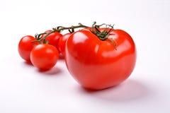 Pomidorowi warzywa Obraz Stock