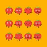 Pomidorowy charakter - ustalone różne opcje i emocje Fotografia Royalty Free