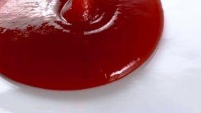 Pomidorowy czerwony kumberlandu spływanie na bielu talerzu Wręcza dolewanie kumberland od kumberland łodzi na bielu talerzu obraz stock