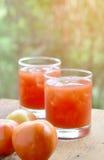 Pomidorowy owocowy sok Fotografia Stock