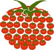 Pomidorowy pojęcie - jeden duży robić dużo małym Obraz Stock