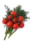 pomidorowy tło biel Fotografia Stock