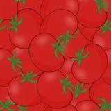 Pomidorowy wektor Mnóstwo czerwoni pomidory Bezszwowi deseniowi tło pomidory Obrazy Stock