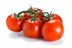 pomidoru świeży dojrzewający winograd obrazy royalty free