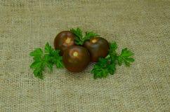 Pomidoru Czarny książe Niezwykły ciemny kolor Fotografia na grabić Obraz Royalty Free