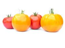 pomidoru czerwony kolor żółty dwa Obrazy Royalty Free