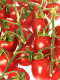 pomidoru winograd Fotografia Royalty Free