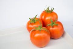pomidory świeże Zdjęcie Stock