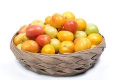 pomidory świeże Fotografia Royalty Free
