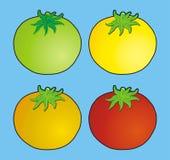 pomidory Ilustracji