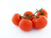 Pomidory Zdjęcia Stock