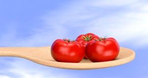 Pomidory Fotografia Stock