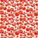 Pomidory. akwarela Fotografia Royalty Free