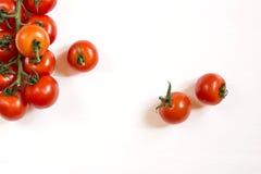 pomidory białe tło Zdjęcie Stock