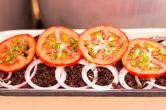 Pomidory i cebule dekoruje jagnięcy krwionośny tradycyjnego na Ekwadorskiej polewce suchy i smażący Zdjęcie Stock