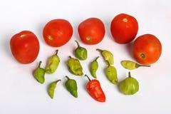 Pomidory i Chillies Zdjęcia Stock